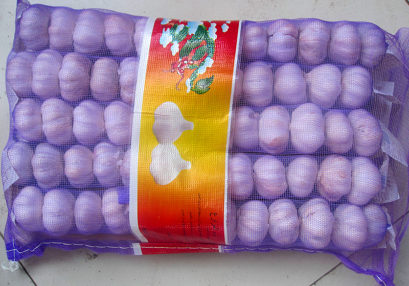 Chinese garlic 250g/mesh bag 5kg/mesh bag